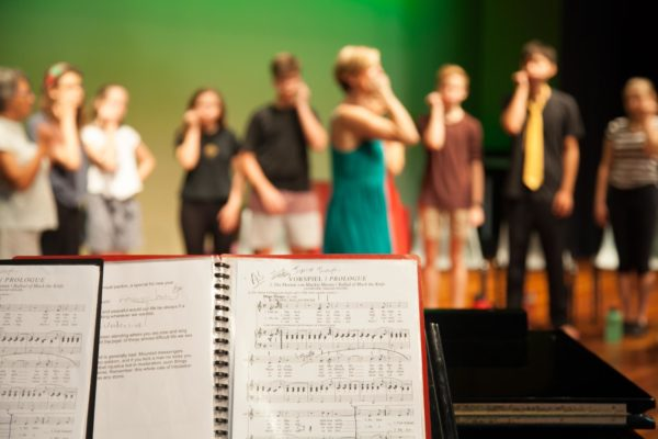 Musical Theatre Pre Tertiary 2